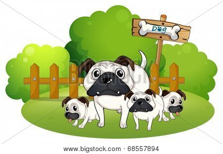Illustration of a group of bulldogs near the fence on a white background