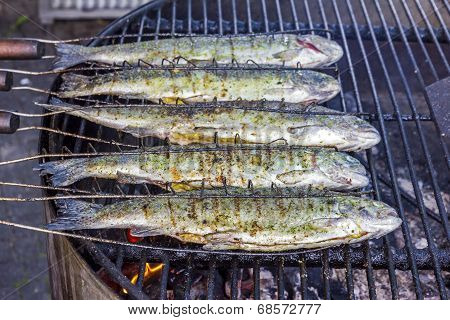 Trout Fish On Grill