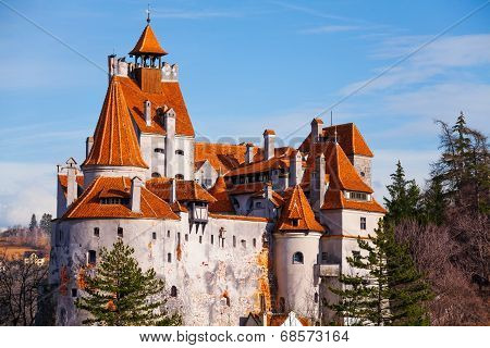 Red roofs of Bran Castle (Dracula castle)