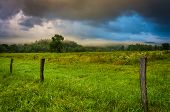 picture of cade  - Fence and fog in a field at sunrise at Cade - JPG