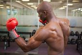 pic of boxing day  - Side view of a shirtless muscular boxer in defensive stance in health club - JPG