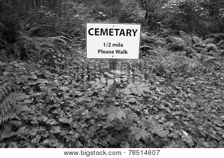 Cemetary Signal Post In The Forest. Vancouver. Canada