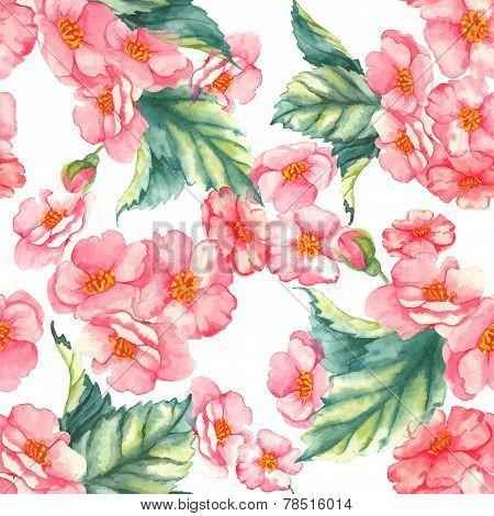 Beautiful watercolor seamless pattern with tender pink brier flowers and leaves on the white backgro