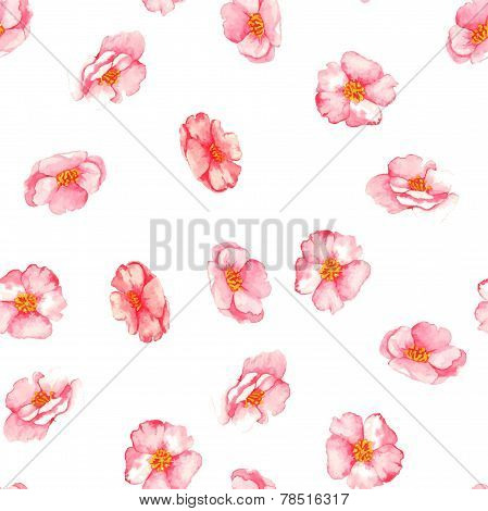 Beautiful watercolor seamless pattern with tender pink brier flowers on the white background