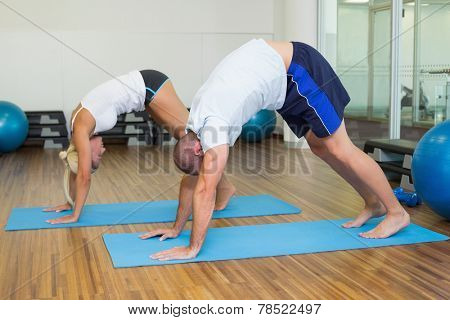 Side view of a sporty young couple in bending posture at the fitness studio