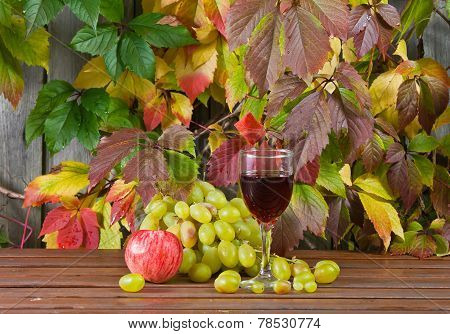 Vine And Grape
