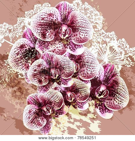 Grunge Vector Background With Orchid Flowers