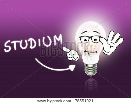 Studium Bulb Lamp Energy Light Pink