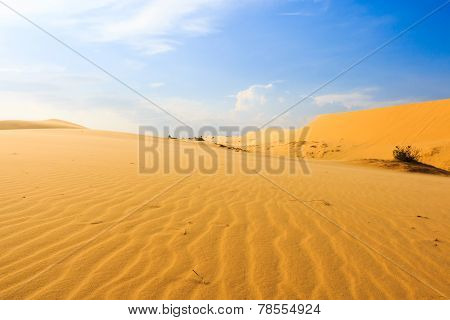 Wave On Desert At Mui Ne, South Vietnam