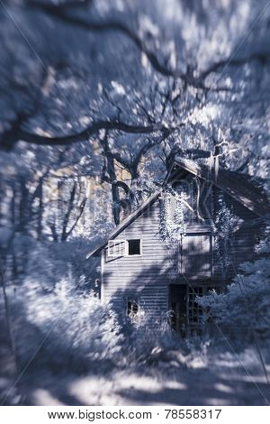 infrared photo of barn and trees taken with tilt-shift lens