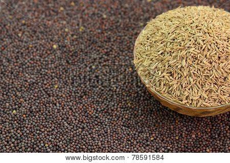 Indian Brown Mustard Seeds and cumin seeds