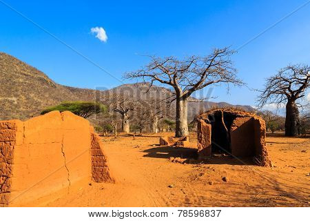 House Surrounded By Baobab Trees In Africa