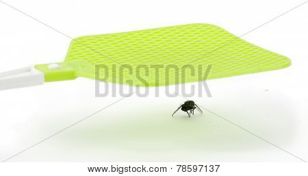 Fly swatter isolated on white background.