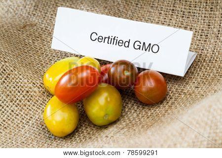 Gmo Tomatoes