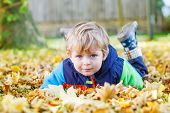 Постер, плакат: Cute Kid Boy Having Fun In Autumn Park