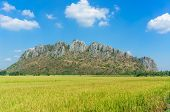 picture of ooze  - Rice field among mountain on central of Thailand Khao Hnor Nakhon Sawan Province