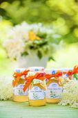 stock photo of elderflower  - Glasses with elderflower flower jelly in the garden - JPG