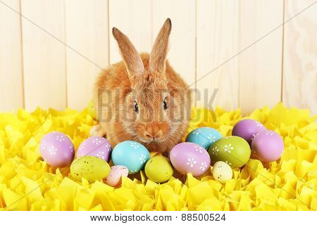 Cute red rabbit with Easter eggs on yellow fabric on wooden wall background