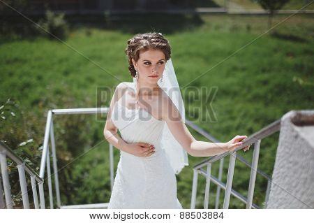 Morning Bride