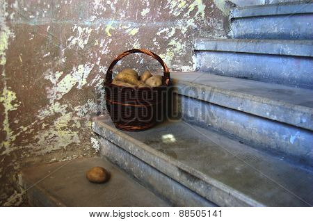 Potatoes in wicker basket on stairs