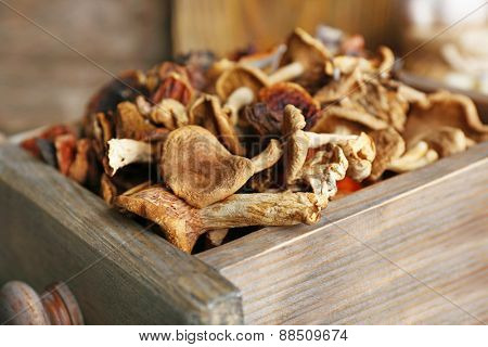 Dried mushrooms in crate, closeup