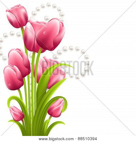 Tulip bouquet on the white background with pearls
