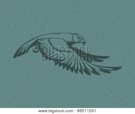 Eagle flying logo emblem template mascot symbol for business or shirt design. Vector Vintage Design Element.