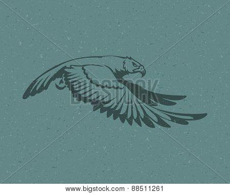 Eagle flying logo emblem template mascot symbol for business or shirt design. Vector Vintage Design Element.