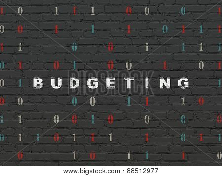 Finance concept: Budgeting on wall background
