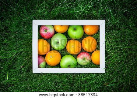 Still life of fruit on the grass