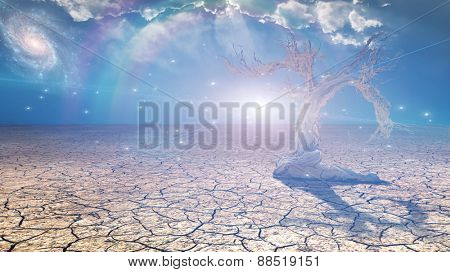 Delightful desert scene with light