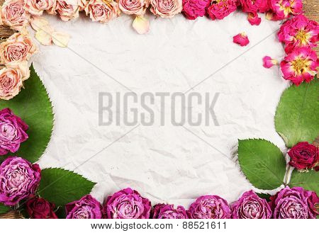 Dried roses on sheet of paper background