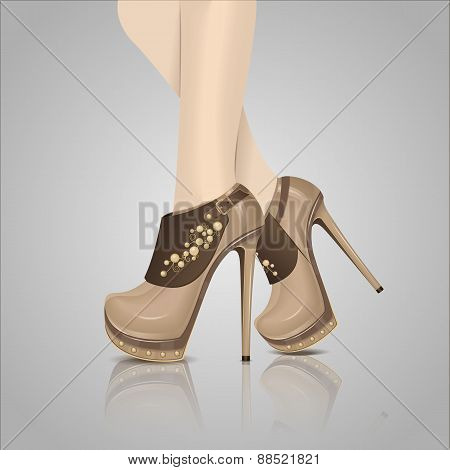 Women's brown shoes on the light background