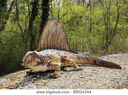 Full Length Model Of Dimetrodon Dinosaur