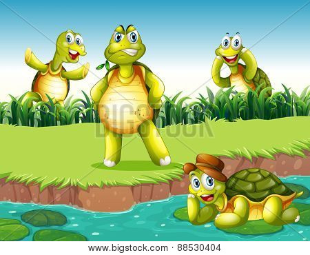 Four turtles relaxing by the pond