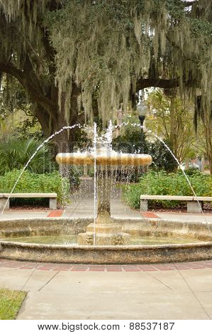 Fountain In Park In Florida