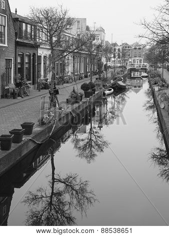 Small tree lined canal  in Leiden