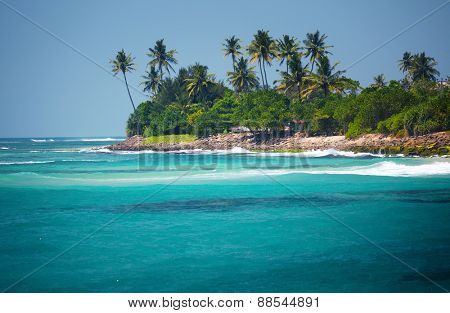 Palm trees on the coast and blue water of Indian Ocean. Sri Lanka