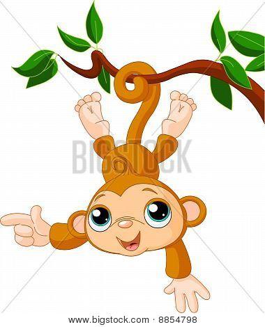 Bebé mono en una demostración de árbol