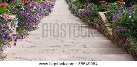 Stair And Flowerbed