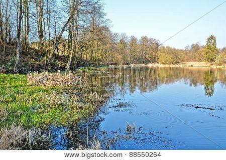 Wetland Hdr