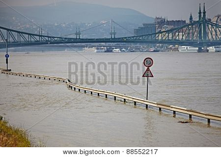 Flood of the River Danube