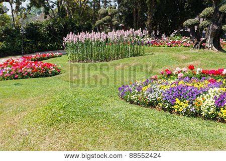 Flowerbed Decorating In The Garden