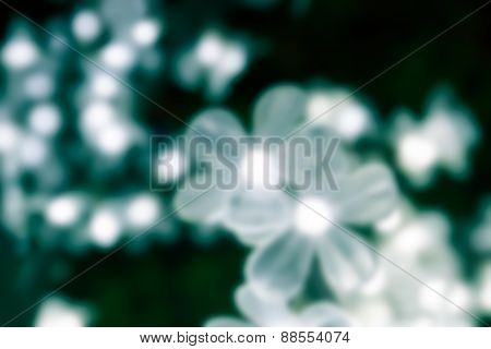Blurry Defocused Image Of White Light Decorating On Fake Tree For Background