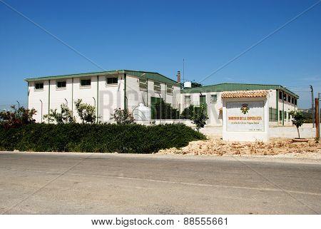 Olive Oil Production Plant, Montilla.