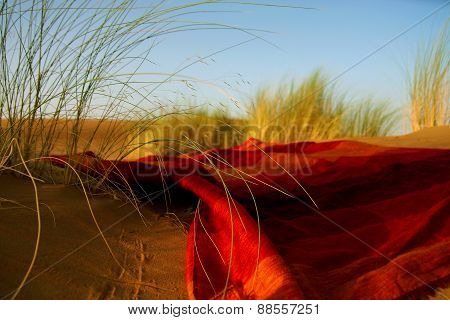 Moroccan Desert Scenery With Desert Grass Plantation And Ornametal Red Blanket