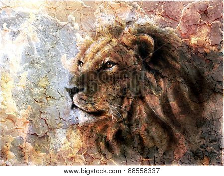 Beautiful  Painting Of A Lion Head With A Majesticaly Peaceful Expression Desert Pattern