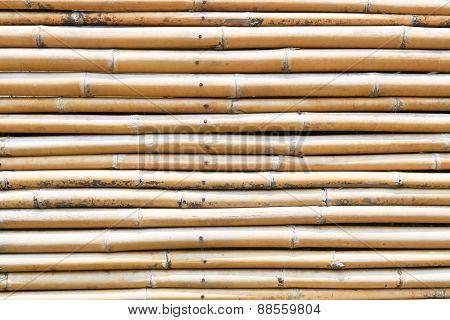 Background Of Bamboo Fence