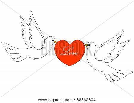 Doves And Red Heart