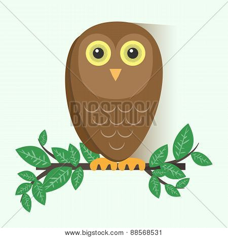 Brown Owl Sitting on a Branch